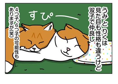 猫1_2_04