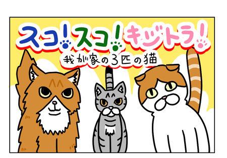 猫1_1_01