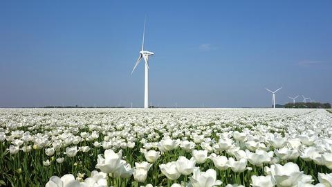wind-mill-3344661_960_720