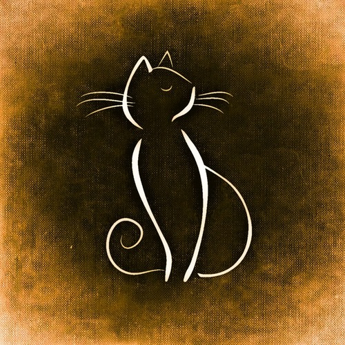 cat-859019_640