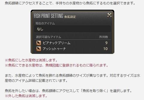 FF14_000256