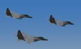 eagle_improved