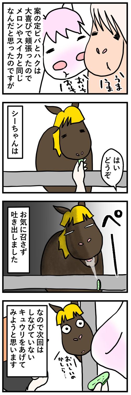 シルときゅうり2