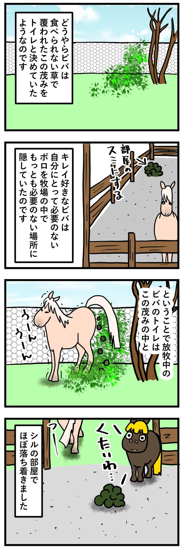 ビバのトイレ事情2