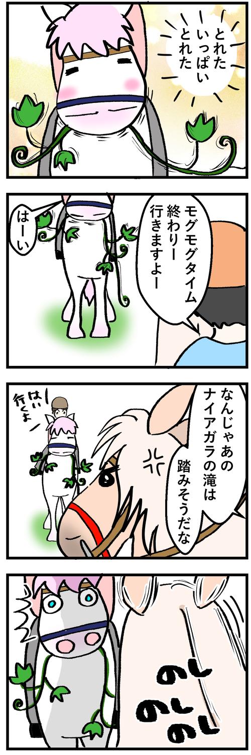ハクの蔓草千切る1