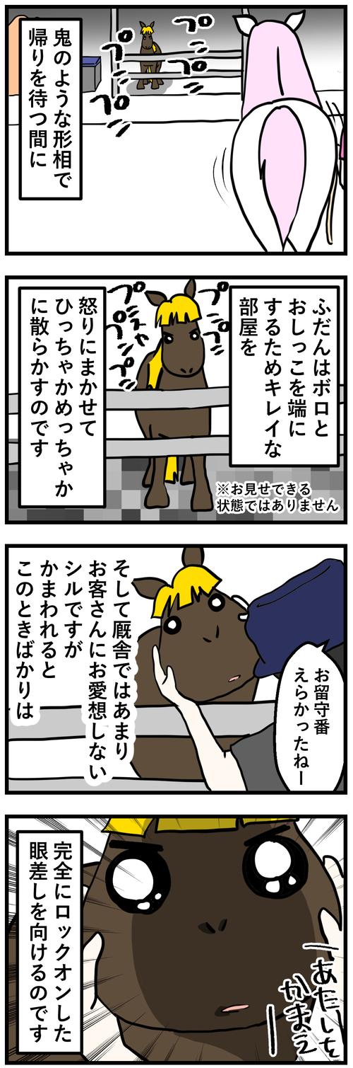 シルお留守番2