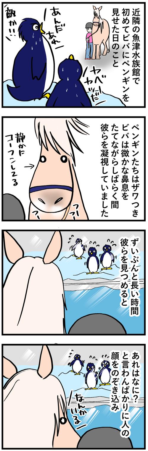ビバとペンギンさん1