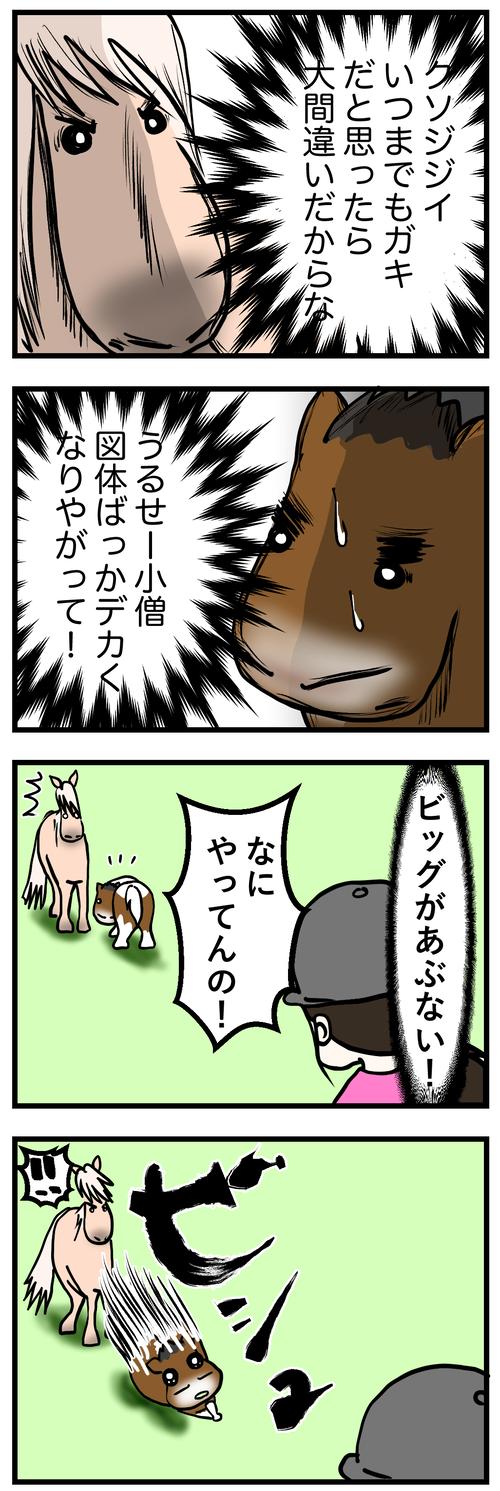 ビバビッグ喧嘩1