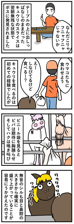 シルときゅうり1