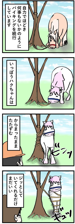 木に巻きつく2