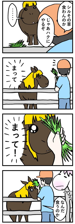 コミック2シル草ペッ1