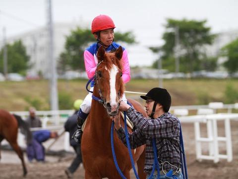 アムロ (競走馬)