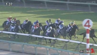 【ウマ娘】リアル競馬って、馬が最後まで走らなかったり他の馬蹴飛ばしたりすることないの?
