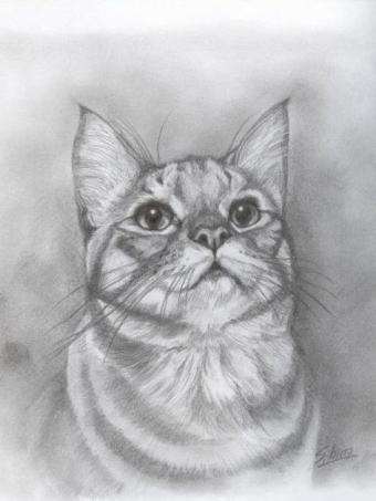 金太郎肖像画