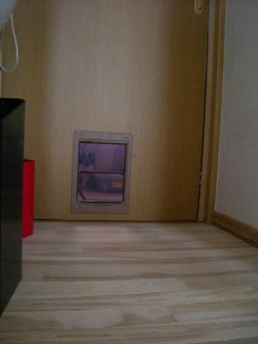 20070329202336.jpg