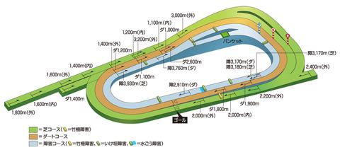 pic_course_3d