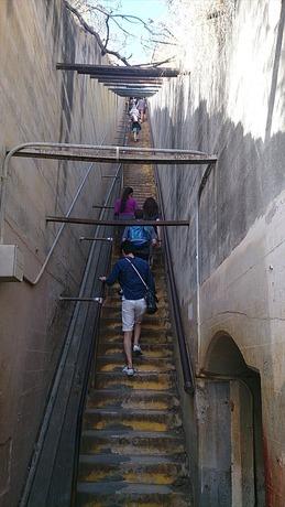 ダイヤモンド・ヘッドの階段_R