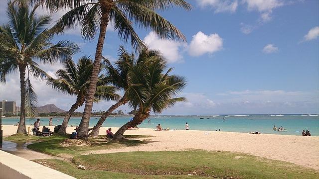 アラモアナビーチ2_R
