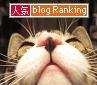 人気blogランキング【猫】へ