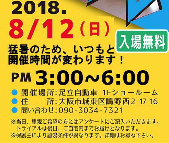 スクリーンショット 2018-08-07 8.59.17