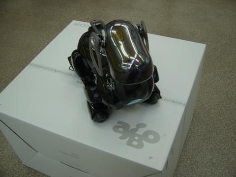 DSC00484