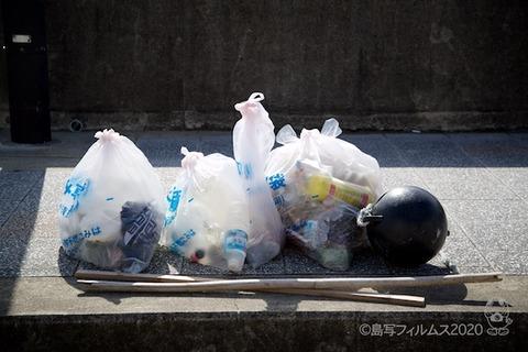 篠島ウミガメ隊_2020-06-17 08-03-29