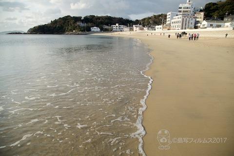 篠島ウミガメ隊_2017-02-08 07-40-13