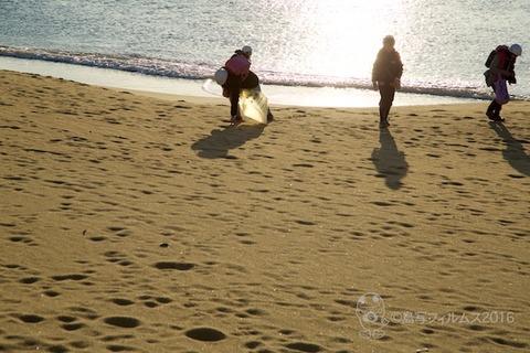 ウミガメ隊_2016-02-10 07-34-29