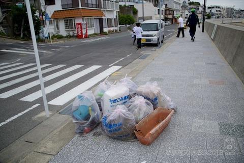 篠島ウミガメ隊_2018-05-23 08-07-44