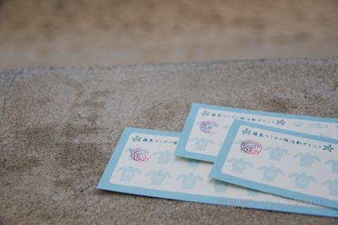 ウミガメ隊_篠島小学校_2013-05-15 07-59-27