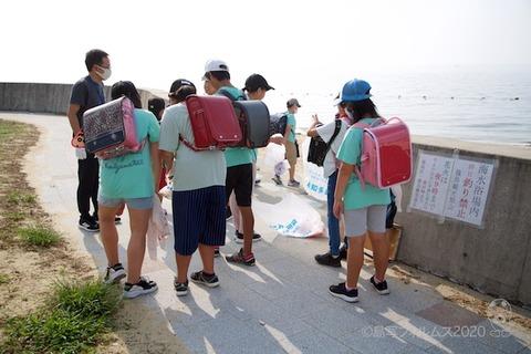 篠島ウミガメ隊_2020-08-05 07-36-59