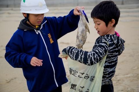 ウミガメ隊_篠島_2014-11-05 08-00-25