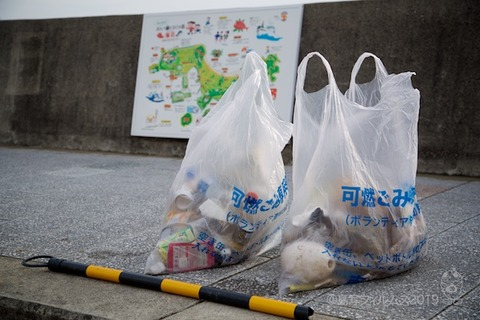 篠島ウミガメ隊_2019-03-06 07-58-20