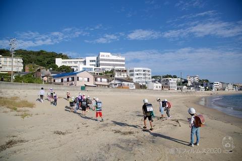 篠島ウミガメ隊_2020-10-07 07-50-15