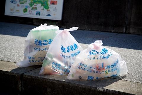 篠島ウミガメ隊_2020-07-22 07-55-33