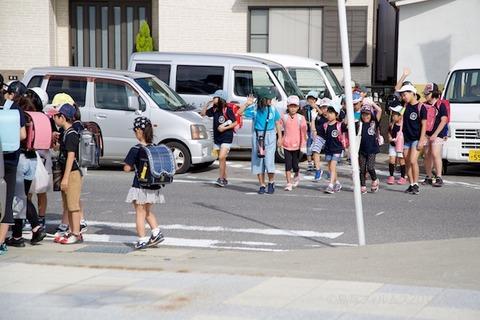 篠島ウミガメ隊_2018-06-13 07-41-51