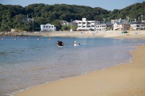 ウミガメ隊_2015-08-12 07-44-39