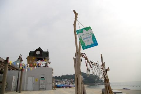 ウミガメ_篠島_前浜_2014-07-23 08-21-25