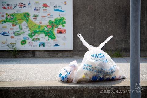 篠島ウミガメ隊_2019-06-19 08-07-00