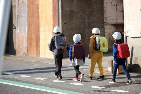 篠島ウミガメ隊_2020-11-04 08-01-26