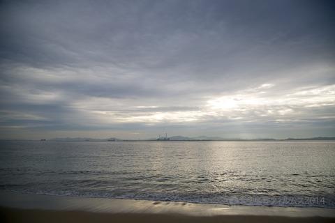 ウミガメ隊_篠島_2014-11-05 07-43-23