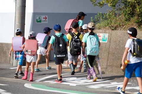 篠島ウミガメ隊_2020-09-09 07-50-40