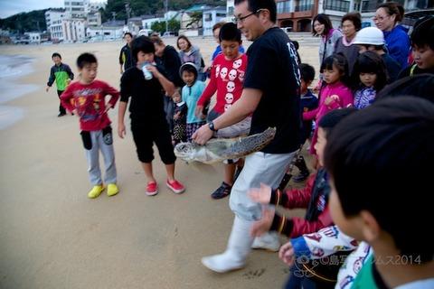 ウミガメ隊_篠島_2014-11-05 16-39-53