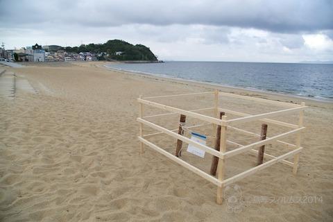 ウミガメ隊_ウミガメ産卵_2014-06-21 17-26-47