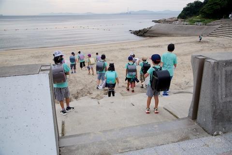 篠島ウミガメ隊_2020-07-29 07-42-53