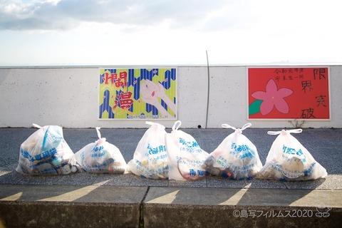 篠島ウミガメ隊_2020-11-04 08-04-23
