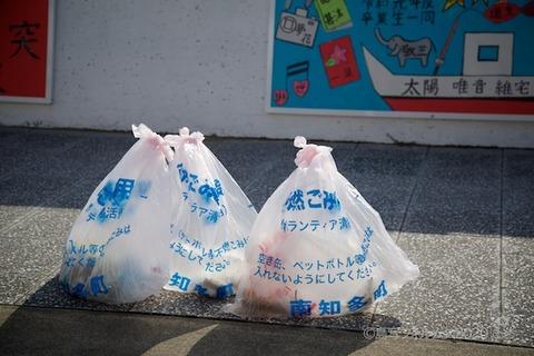 篠島ウミガメ隊_2020-09-09 07-56-57