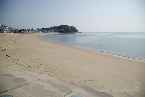 篠島ウミガメ隊_2020-06-03 08-00-50