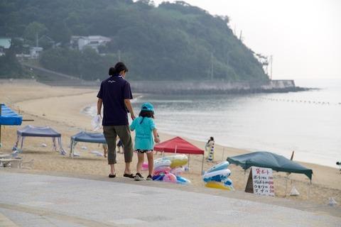 ウミガメ_篠島_前浜_2014-07-23 07-39-11