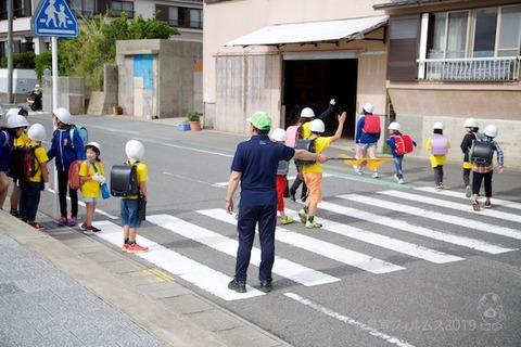 篠島ウミガメ隊_2019-05-29 07-51-51